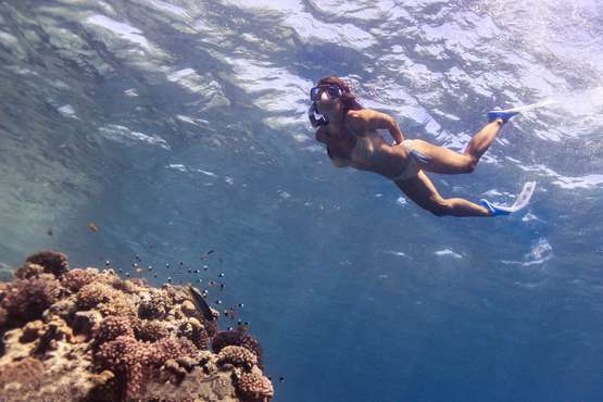 EXCURSIONS SNORKELING