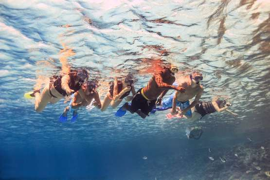 Our service for snorkeling trips includes